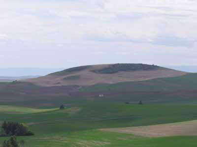 House On the Rolling Hills of the Palouse